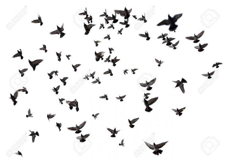 #áthatás – Baba repül