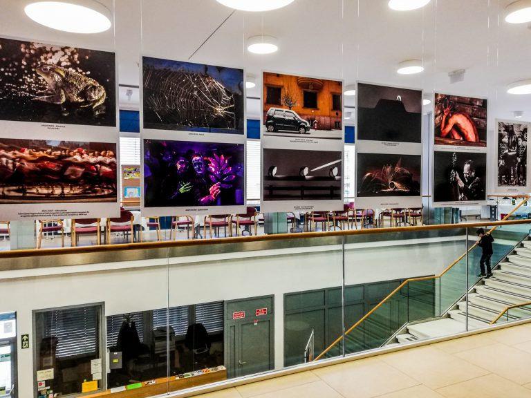 Vas megye pillanatait csípték el – Fotóriportereket díjaztak a  IX. Szombathelyi Sajtófotó Kiállításon