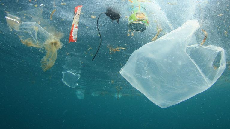 Plastic Free July – Csökkentsd te is a műanyaglábnyomod!