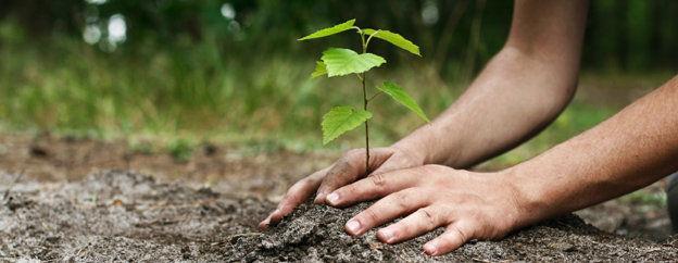"""Környezetvédelem generációkon át – Így vált """"divattá"""" a fenntartható gondolkodás és a tudatos élet"""