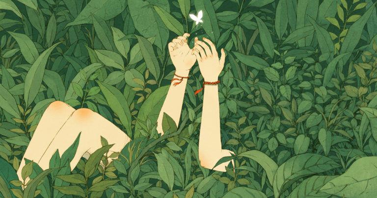 A természet tündértitkai – kincskeresés Wass Albert mesekönyveiben