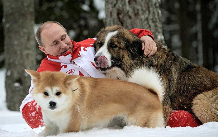 Jessikka Aro: Putyin trolljai – Te is lehetsz valakinek a trollja